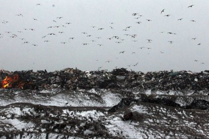 Storm-Damaged Communities On East Coast Hit By Nor'Easter