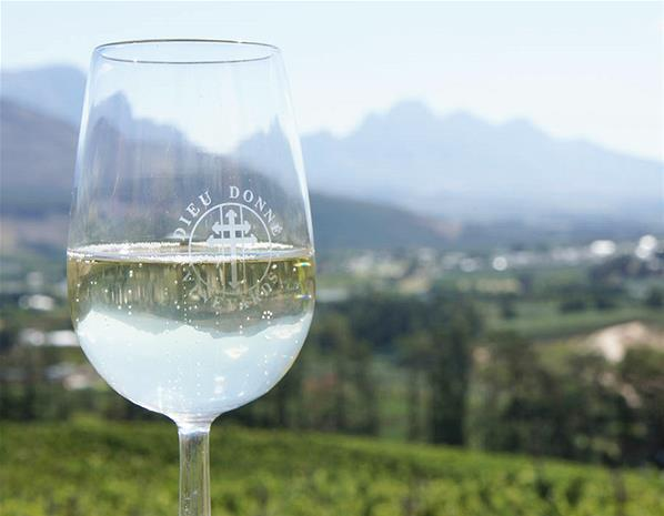 South Africa is the world's 7th largest wine producer. Over 40% of its wines are shipped overseas