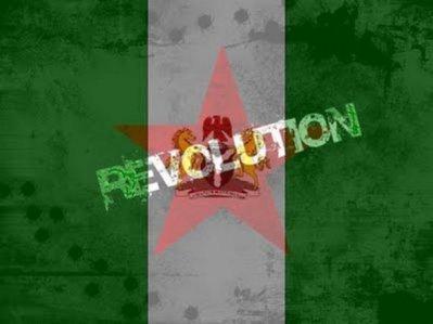 Nigeriarevolution